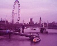 PurpleLondon004