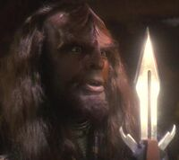 Worf (mirror).jpg