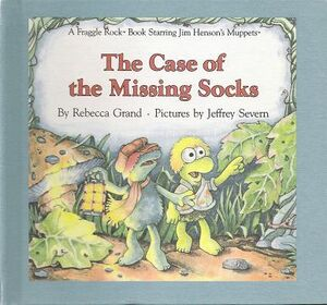 The Case of the Missing Socks