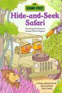 Hide-and-Seek Safari