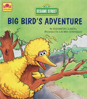 Big Bird's Adventure