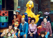 Sesame 1973