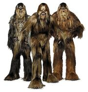 ThreeWookieeAmigos-ROTSVD
