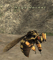 HugeHornet