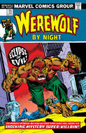 Werewolf by Night 25