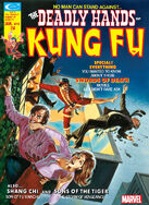 Deadly Hands of Kung Fu 8