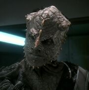 Jem&#39;hadar Officer
