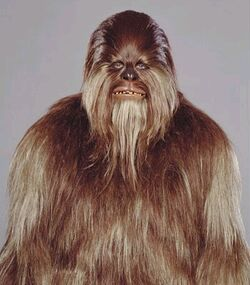 Wookiee