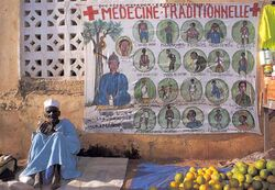 Traditional healer Cote dIvoire 060433433791