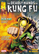 Deadly Hands of Kung Fu 19