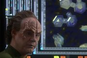 Phlox shows Archer the virus