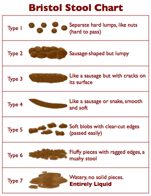 Bristol Stool Chart
