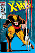 Uncanny X-Men Vol 1 207