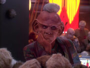 Quark&#39;s infested with tribbles