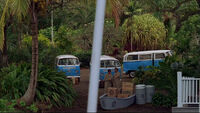 3x20 DHARMA buses