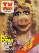 TVWeek17Mar1979