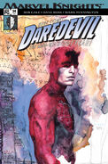 Daredevil Vol 2 24