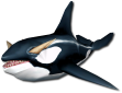 MiniOrca.png