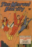 Marvel Family 3