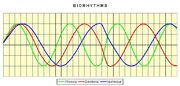 Biorhythms