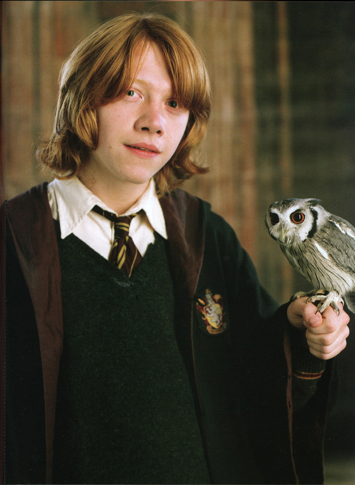http://images1.wikia.nocookie.net/__cb20071106150302/harrypotter/fr/images/e/ef/PromoHP4_Ron_Coq.jpg