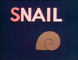 S-Snail