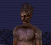 Werewolfsim