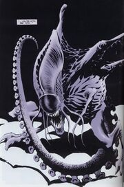 Xenomorph Queen Mother | RM.