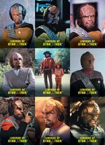 Legends of Star Trek - Worf