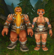 Wildhammer Dwarves