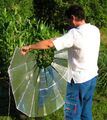 Cocina Solar Parablica Plegable 1.JPG