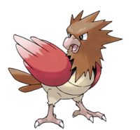 Spearow
