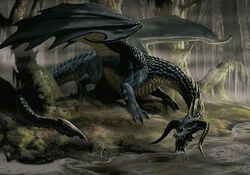 4e black dragon