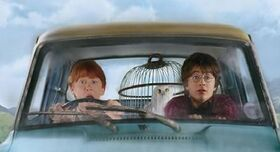 HarryRonFlyingCar
