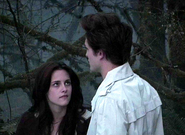 Kristenstewartandrobertpattinson