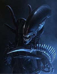 AVP Xenomorph