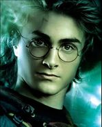 Harry Potter 14yrs