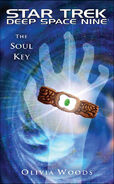 The Soul Key temp cover