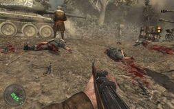 German Gore WaW