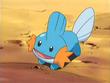 http://images1.wikia.nocookie.net/__cb20090221203803/es.pokemon/images/thumb/5/57/EP355_Mudkip_de_Brock.png/110px-EP355_Mudkip_de_Brock.png