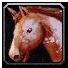 Ability_mount_ridinghorse.png