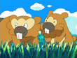 EP470 Bidoof y Bibarel