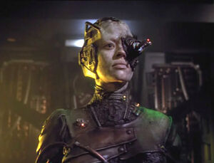 Sette-borg
