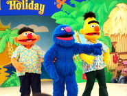 Sesame-street-beach-8