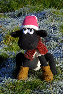 Shaun in the Winter