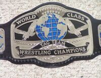 WCWA World Tag Team Championship
