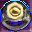 A Society Ring of Endurance Icon