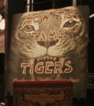 HowtoTameTigers