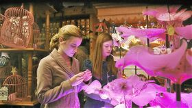 Hermione and Ginny at the Weasley&#39;s Wizard Wheezes Shop