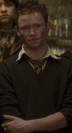 http://images1.wikia.nocookie.net/__cb20090728200229/harrypotter/images/thumb/e/ec/Seamus_hbpclear.PNG/250px-Seamus_hbpclear.PNG